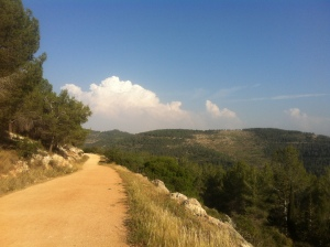 Trail running outside Jerusalem.